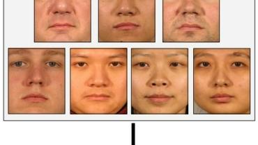 Identificação de Face PLS (PFI)